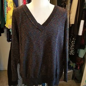Lane Bryant metallic v-neck sweater.